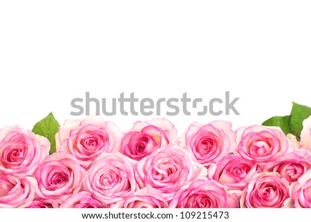 beautiful bouquet of pink roses isolated on white - stock photo