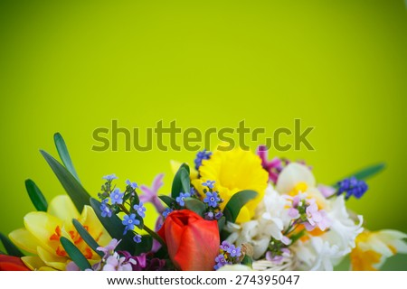 beautiful bouquet of spring flowers on a green background - stock photo