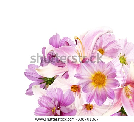 Beautiful bouquet pink flowers garden on white background  - stock photo