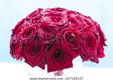 beautiful bridal bouquet of roses for bride - stock photo