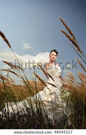 Beautiful bride in a field with flowers - stock photo