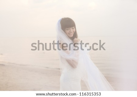 Beautiful bride in a long dress with a long veil on the beach at sunset - stock photo