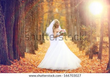beautiful bride in the autumn park - stock photo