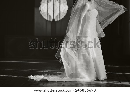 Beautiful bride with long veil. - stock photo