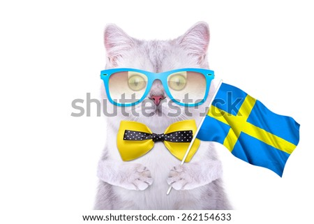 Beautiful British cat with the flag of Sweden. Language School. Flags of the world. Flags of countries - stock photo
