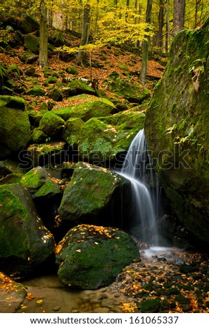 Beautiful brook in autumn colored forest - stock photo
