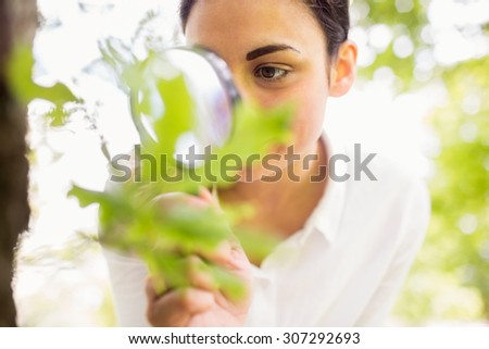 Beautiful brunette looking at plant through magnifying glass on a sunny day - stock photo