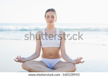 Beautiful brunette woman meditating sitting on the beach with closed eyes - stock photo