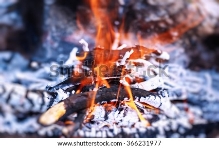 Beautiful burning bonfire in the camp, preparing charcoal for barbecue, natural fuel, abstract natural background - stock photo