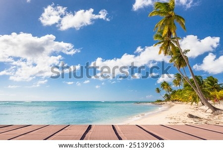 Beautiful caribbean beach on Saona island, Dominican Republic - stock photo
