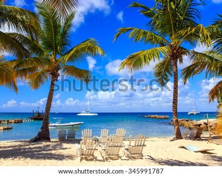 Beautiful caribbean beach on Saona island, Dominican Republic - stock photo