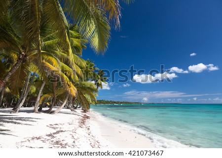 Beautiful caribbean beach on Saona island, Dominican Republic. - stock photo