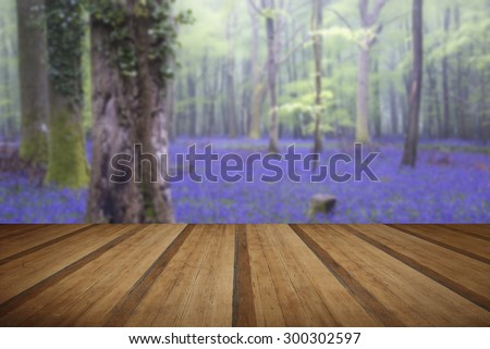 Beautiful carpet of bluebell flowers in misty Spring forest landscape with wooden planks floor - stock photo