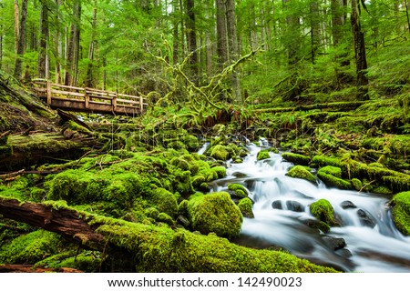 Beautiful cascade waterfall in Sol Duc falls trail, Olympic national park, WA, US - stock photo