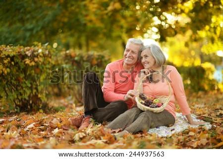 Beautiful caucasian elderly couple in the park in autumn - stock photo