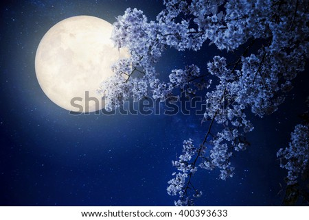 Beautiful cherry blossom (sakura flowers) with Milky Way star in night skies, full moon - Retro style artwork with vintage color tone(Elements of this moon image furnished by NASA) - stock photo