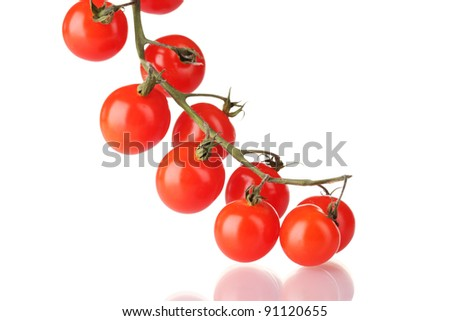 Beautiful cherry tomatoes on a branch isolated on white - stock photo