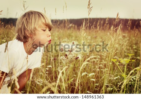 Beautiful child blowing away dandelion flower  - stock photo