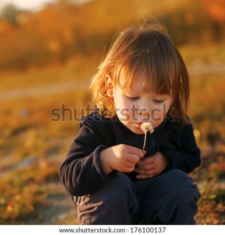 Beautiful child blowing away dandelion flower in sunset light - stock photo