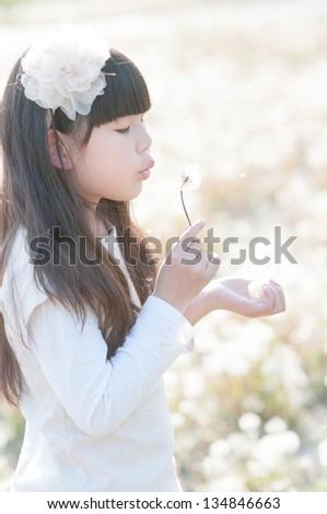 beautiful Chinese girl playing dandelion happily - stock photo
