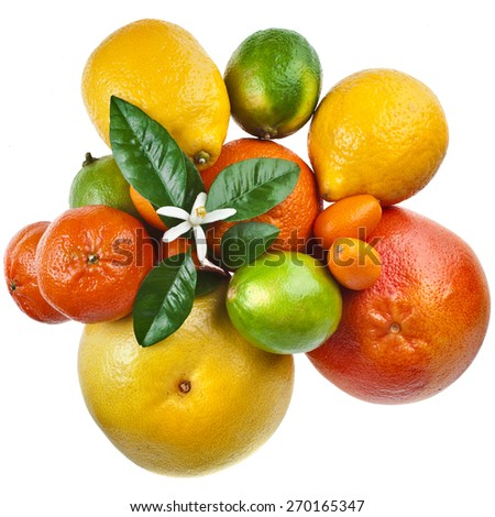Beautiful citrus fruits mix top view isolated on white background - stock photo
