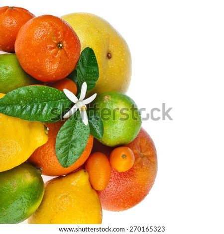 Beautiful citrus fruits with flower isolated on white background - stock photo