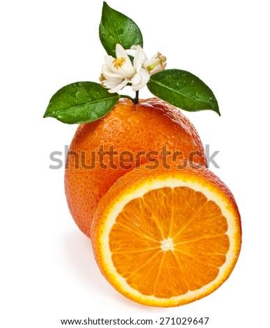 Beautiful citrus orange with slike close up isolated on white background - stock photo