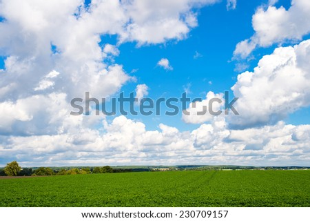 Beautiful clear summer landscape with green grass and cloudy sky - stock photo