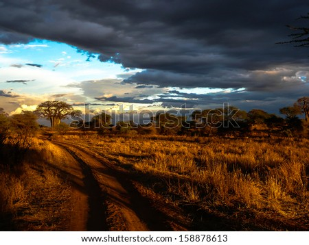 beautiful cloudscape, landscape in Serengeti national park Tanzania. - stock photo