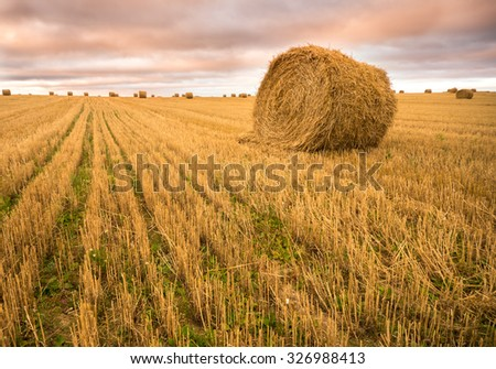 Beautiful cloudy sky at the sunset over the harvest field of rolls of hay - stock photo