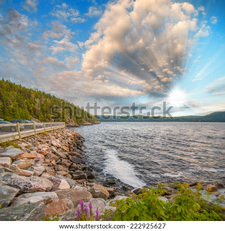 Beautiful coast at sunset with trees and rocks. - stock photo