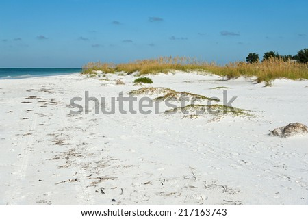Beautiful Coastline on Anna Maria Island, Florida - stock photo