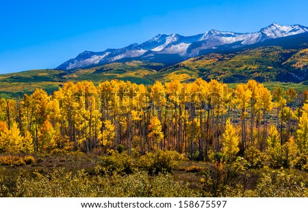 Beautiful Colorado with Aspen Trees in Autumn - stock photo