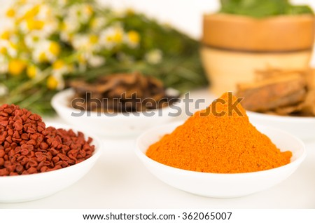 Beautiful colorful display of different spices green orange brown in white bowls, shot from above side angle, bright background. - stock photo