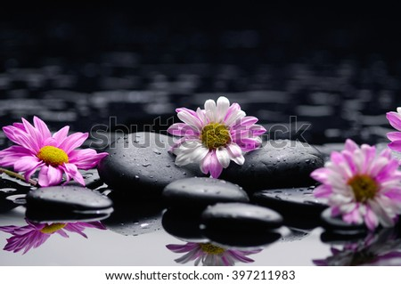 beautiful colorful flowers with therapy stones  - stock photo