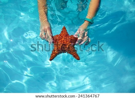 beautiful colorful starfish in girl hands in blue bright summer water - stock photo
