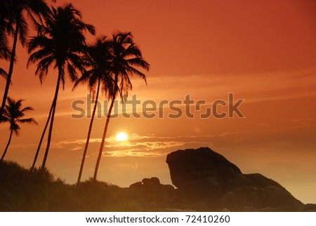 Beautiful colorful sunset over boulders seen under the palms on Sri Lanka - stock photo
