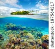 Beautiful Coral reef with fish on the background of a small island to the hotel - stock photo