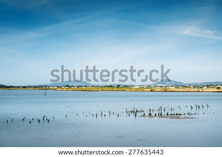 Beautiful countryside landscape with a lake and wooden poles - stock photo