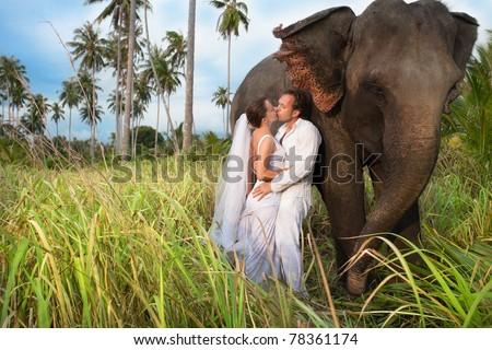 beautiful couple with elephant inwedding dress - stock photo