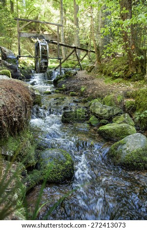 Beautiful creek in a green forest in germany - stock photo