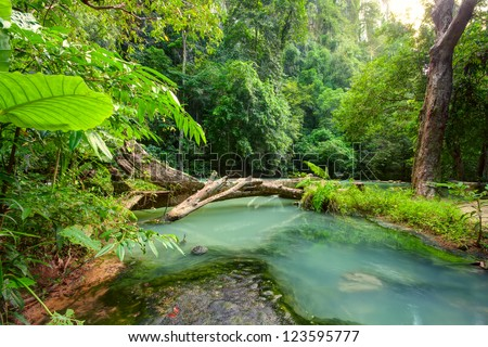 Beautiful crystal stream - stock photo