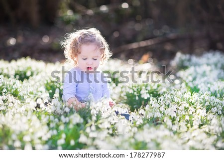 Beautiful curly toddler girl playing with first spring flowers in a beautiful spring sunny park - stock photo