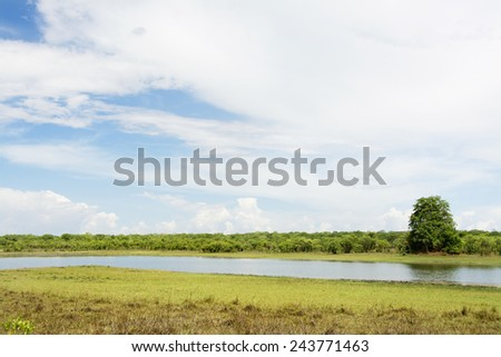 Beautiful Day at Lifupa Dam, Kasungu National Park, Malawi - stock photo