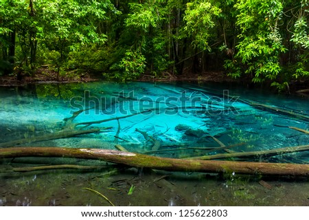 Beautiful deep forest lake with crystal water. Real color ot the lake. - stock photo