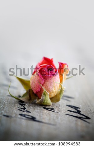 Beautiful dried pink roses on wooden background - stock photo