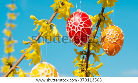 Beautiful Easter eggs hanging from a blooming Forsythia - stock photo