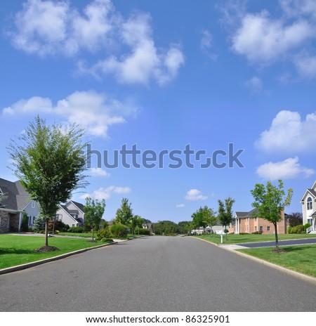 Beautiful Empty Suburban Residential Neighborhood Street on Sunny Blue Sky Day - stock photo