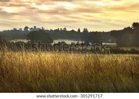 Beautiful English countryside. Stunning landscape over English countryside landscape in Summer sunset - stock photo