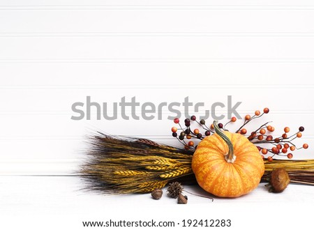 Beautiful Fall Mini Pumpkin with Wheat, Acorns, and Berries on White Board Background with empty room or space for copy, text.  Horizontal  - stock photo